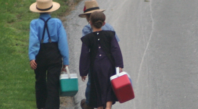 Urgent: We Need People to Deliver These Papers to All Private Schools Especially Amish & Mennonite Ones!